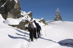 Raquettistes en Montagne Ardéchoise